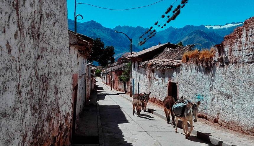 Tour to Maras near Cusco