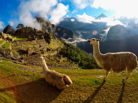 Cusco, Titicaca, Arequipa and Lima express