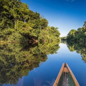 Pacaya Samiria National Reserve in the Amazon
