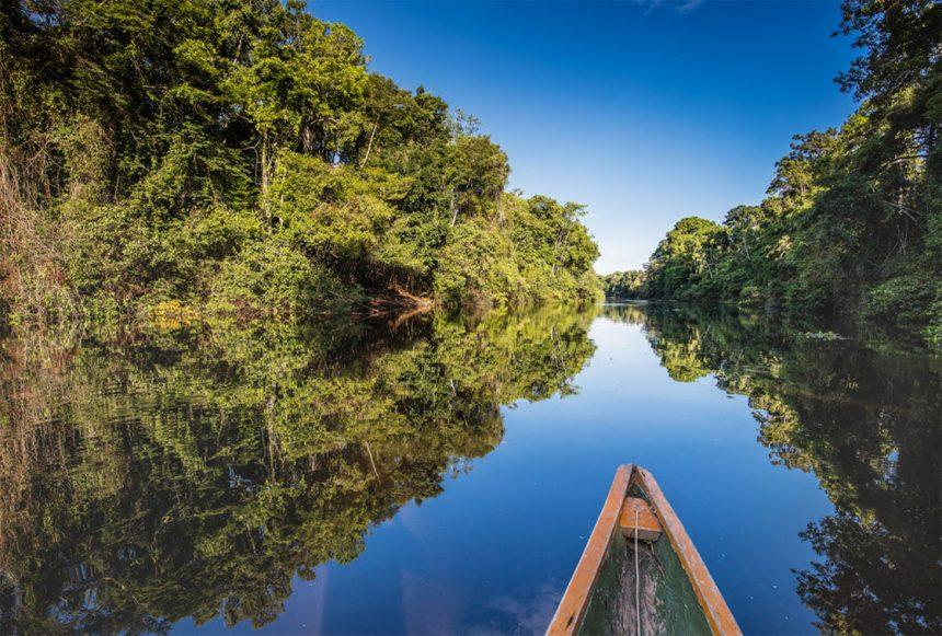 Pacaya Samiria National Reserve in the Amazon