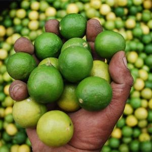 Peruvian Limes are Perfect for Ceviche!