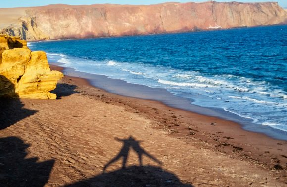 Bicycle Through Paracas National Park: A Great Desert Adventure
