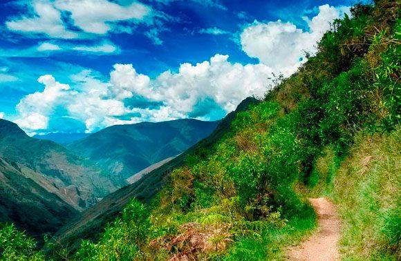 Inca Jungle Peru